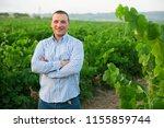 portrait of male farmer ... | Shutterstock . vector #1155859744