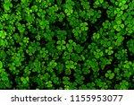 Green leaves pattern leaf...