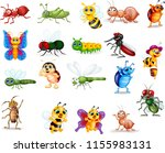 cartoon insect collection set | Shutterstock .eps vector #1155983131