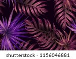pink red exotic pattern.... | Shutterstock .eps vector #1156046881