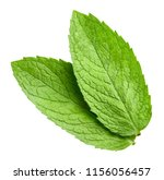 mint leaves isolated on white... | Shutterstock . vector #1156056457