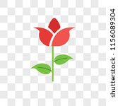 tulip vector icon isolated on... | Shutterstock .eps vector #1156089304