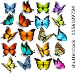 Stock vector collection of colorful butterflies flying in different directions vector 1156109734