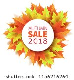 autumn leaves. bright colourful ... | Shutterstock .eps vector #1156216264