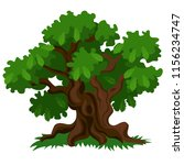 a deciduous oak tree with green ... | Shutterstock .eps vector #1156234747
