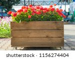 large wooden pot with flower in ... | Shutterstock . vector #1156274404