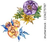 watercolor colorful bouquet... | Shutterstock . vector #1156275787