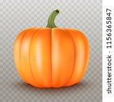 realistic pumpkin.halloween... | Shutterstock .eps vector #1156365847