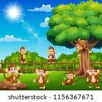 The Monkeys Are Enjoying Nature ...