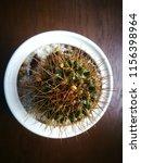 cactus wood desk background | Shutterstock . vector #1156398964