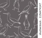 hand drawn gannet.  vector...   Shutterstock .eps vector #1156474147