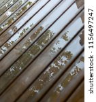 Wet Cottage Deck. Reflections...