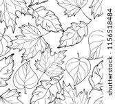 hand drawn autumn background.... | Shutterstock . vector #1156518484