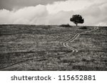 abstract countryside black and white landscape - stock photo