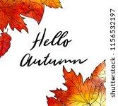 autumn background. hand drawn... | Shutterstock . vector #1156532197
