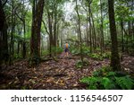 hiker on the trail in green... | Shutterstock . vector #1156546507