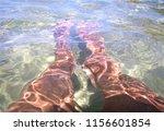 feet under the sea | Shutterstock . vector #1156601854