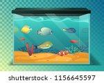 glassware aquarium with exotic... | Shutterstock .eps vector #1156645597