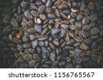black pebbles  beautiful... | Shutterstock . vector #1156765567