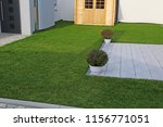 garden with very neat rolled...   Shutterstock . vector #1156771051
