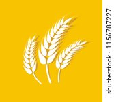 wheat oats logo   Shutterstock .eps vector #1156787227