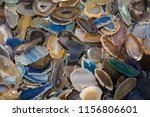 a cross section of agate... | Shutterstock . vector #1156806601