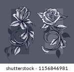graphic detailed black and... | Shutterstock .eps vector #1156846981