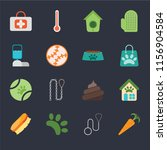 set of 16 icons such as carrot  ...