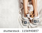 female in slippers with dog... | Shutterstock . vector #1156940857