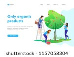 young women picking apples on a ... | Shutterstock .eps vector #1157058304