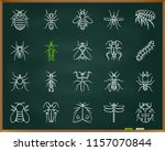danger insect chalk icons set.... | Shutterstock .eps vector #1157070844