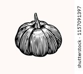 pumpkin. drawing pumpkin...   Shutterstock .eps vector #1157091397