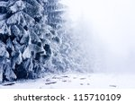 Winter Forest Covered By Snow...