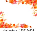 autumnal leaves and tree nut... | Shutterstock . vector #1157124994
