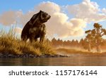 an unusual looking bear  the... | Shutterstock . vector #1157176144