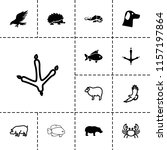 wildlife icon. collection of 13 ... | Shutterstock .eps vector #1157197864
