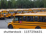 Rows Of School Busses In A...