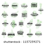 vegetable lettering with fresh... | Shutterstock .eps vector #1157259271