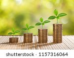coins and money growing plant... | Shutterstock . vector #1157316064