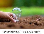 hand holding light bulb on soil ... | Shutterstock . vector #1157317894