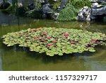 a beautiful island of water... | Shutterstock . vector #1157329717