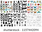 vector  isolated  insect  set ... | Shutterstock .eps vector #1157442094
