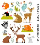 Stock vector vector forest animals collection including deer bear squirrel fox hedgehog fawn hare raccoon 1157454391