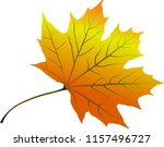autumn yellowed leaf | Shutterstock .eps vector #1157496727