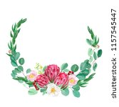 hand painted watercolor proteas ... | Shutterstock . vector #1157545447