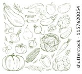 vector set of fruits and... | Shutterstock .eps vector #1157620054