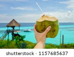 a fresh coconut against a... | Shutterstock . vector #1157685637