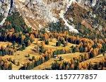 autumn in the alpine meadow... | Shutterstock . vector #1157777857