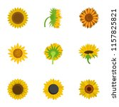 bouquet sunflower icons set.... | Shutterstock .eps vector #1157825821