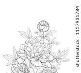 peonies ink background. label... | Shutterstock .eps vector #1157931784